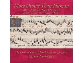STEPHEN DARLINGTON - More Divine Than Human (CD)