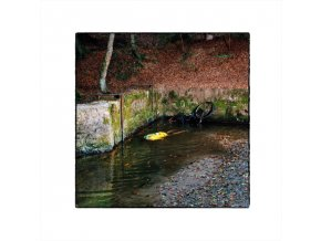 FRANCK VIGROUX - Totem (CD)