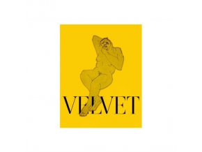 VELVET NEGRONI - Neon Brown (CD)