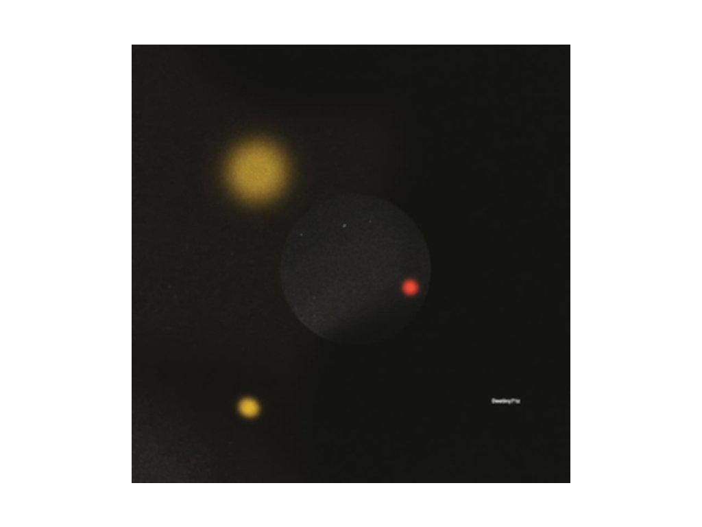 """DESTINY71Z - Ep1: Foodprogramvoltage (12"""" Vinyl)"""