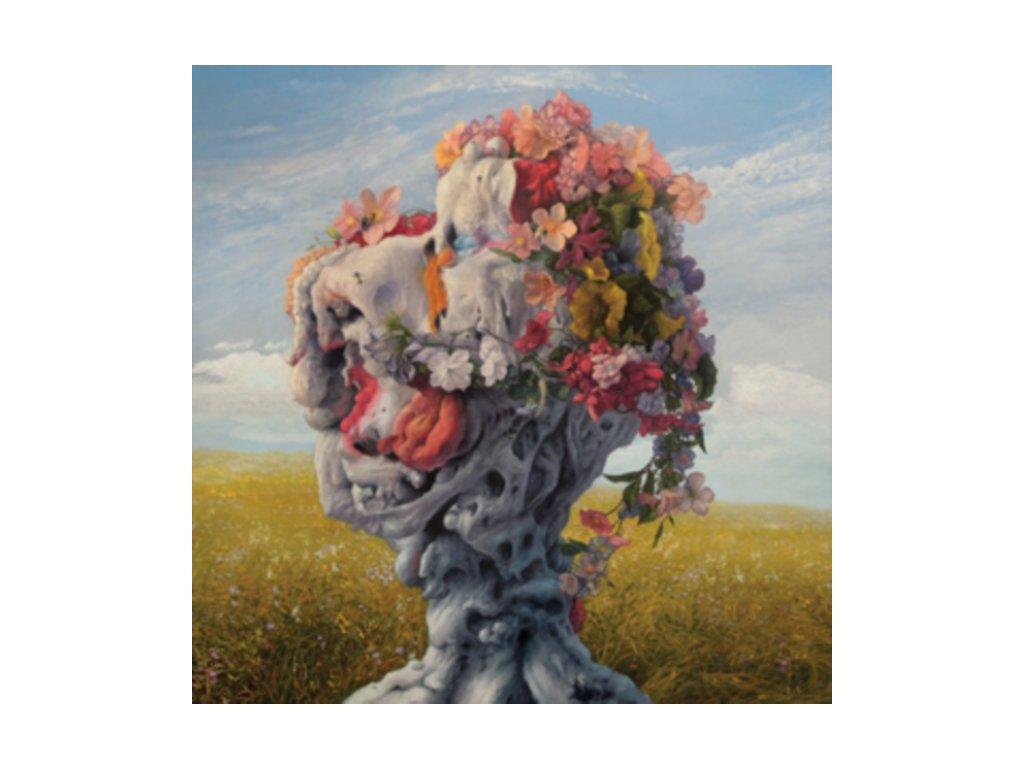 WILDERUN - Veil Of Imagination (LP)