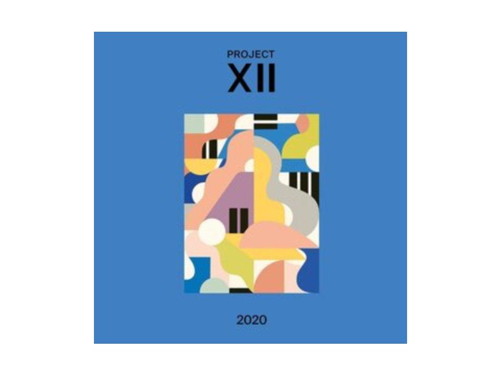 VARIOUS ARTISTS - Xii 2020 (LP)