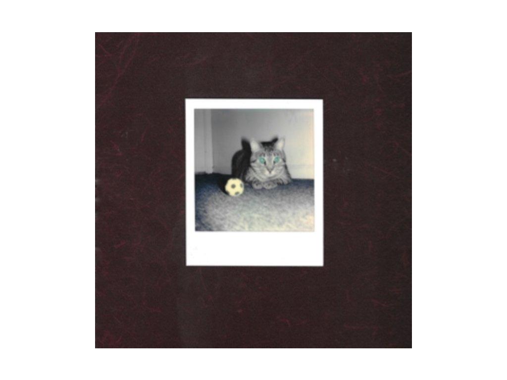 GOALIES ANXIETY AT THE PENALTY KICK - Ways Of Hearing (LP)