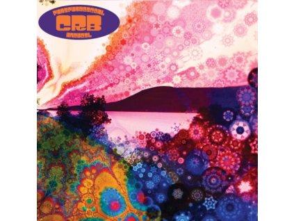 CHRIS ROBINSON BROTHERHOOD - Phosphorescent Harvest (LP)