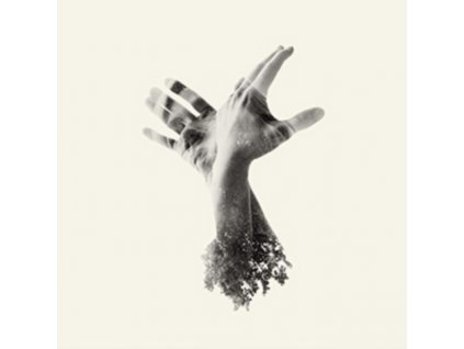 LAST DINOSAUR - The Nothing (LP)