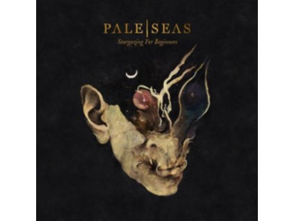 PALE SEAS - Stargazing For Beginners (LP)