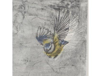 MESANGE - Heliotrope (LP)