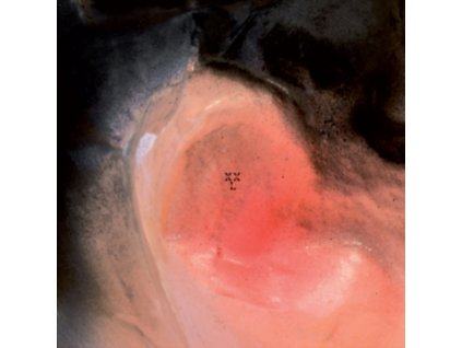 XXL (XIU XIU / LARSEN) - Puff OGigio (LP)