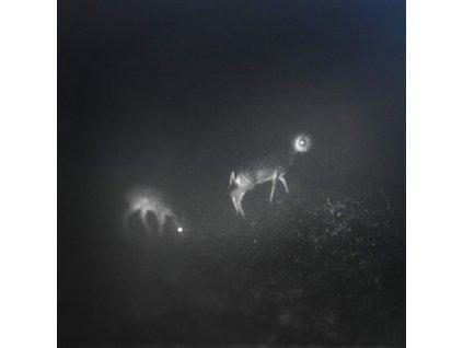 BLISS SIGNAL - Bliss Signal (LP)