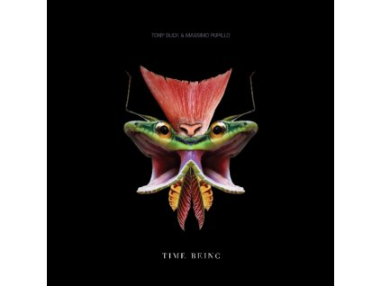 TONY BUCK AND MASSIMO PUPILLO - Time Being LP (LP)