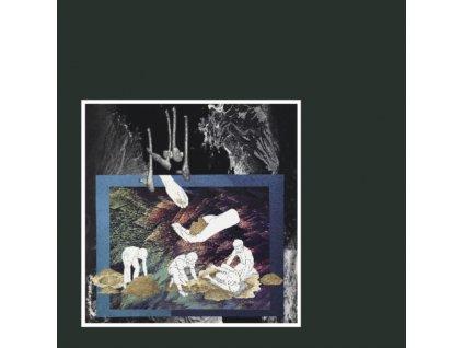 BEN VINCE - Dont Give Your Life (LP)