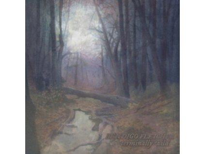 BENDIGO FLETCHER - Terminally Wild / Sleeping Pad (LP)