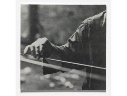 TERRY FOX - Linkage (LP)