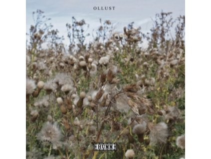 BROADS & MILLY HIRST - Ollust (LP)