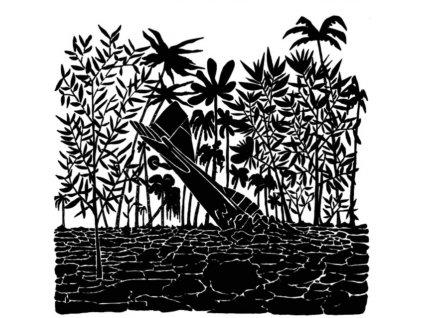 CAPITOL K - Birdtrapper (LP)