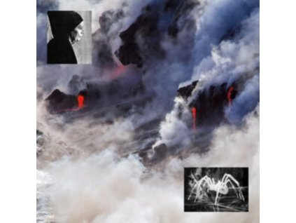 O-WELLS - Ebecs (LP)