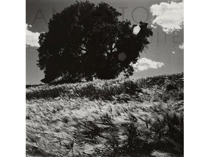 ANCESTORS - Invisible White (LP)
