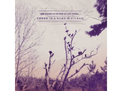 THERE IS A BOMB GILEAD - Lee Bains Iiiandglory Fires (LP)