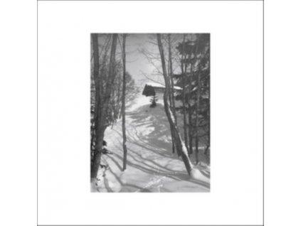 "DJ RICHARD - Path Of Ruin (12"" Vinyl)"