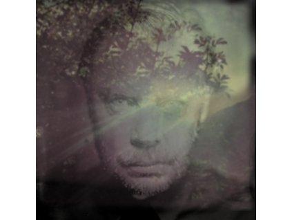 DELANEY DAVIDSON - Shining Day (LP)