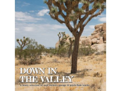 VARIOUS ARTISTS - Down In The Valley (LP)
