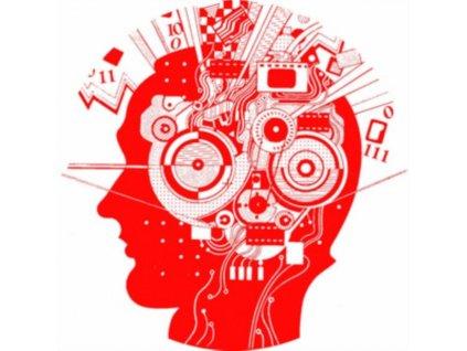 "BREAK THE LIMITS - Paranoize / The Thinker (12"" Vinyl)"