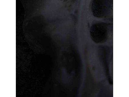 VITO GATTO - Evolve (LP)