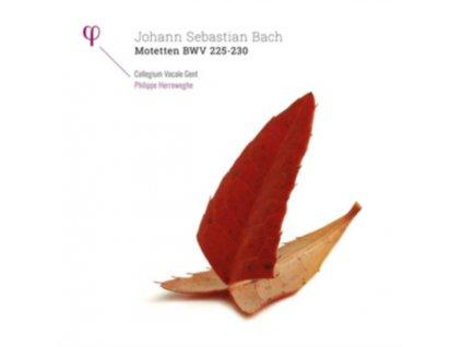 COLLEGIUM VOCALE GENT / PHILIPPE HERREWEGHE - Bach: Motetten Bwv 225-230 (LP)