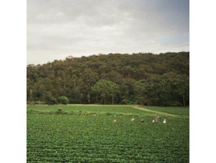 ALBRECHT LABROOY - Healesville (LP)