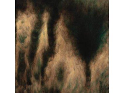 WILLIAM BASINSKI - Lamentations (LP)
