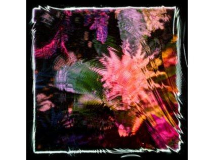 CAMILA FUCHS - Kids Talk Sun (LP)