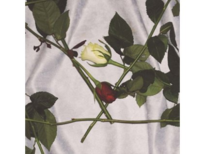 CHAIN OF FLOWERS - Chain Of Flowers (LP)