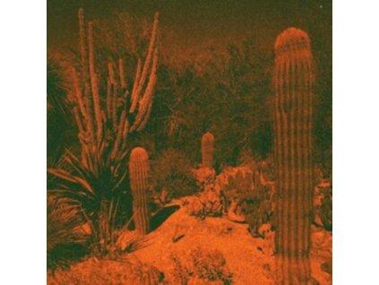 CAMERON KNOWLER & ELI WINTER - Anticipation (LP)