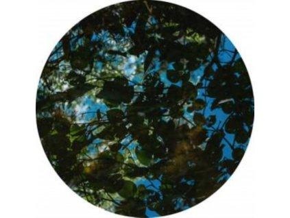 """EL CHOOP - Insane Sends EP (12"""" Vinyl)"""
