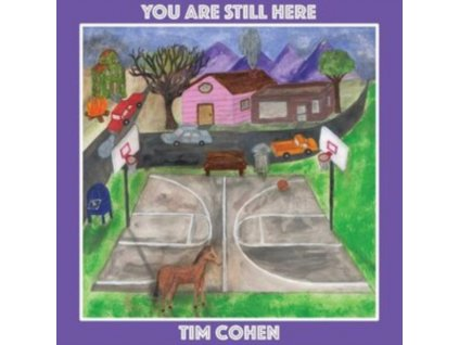 TIM COHEN - You Are Still Here (LP)