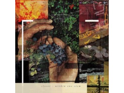 CLOSER - Within One Stem (LP)