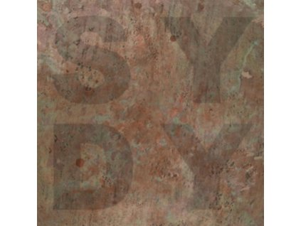 SHINY DARKLY - Bronze (LP)