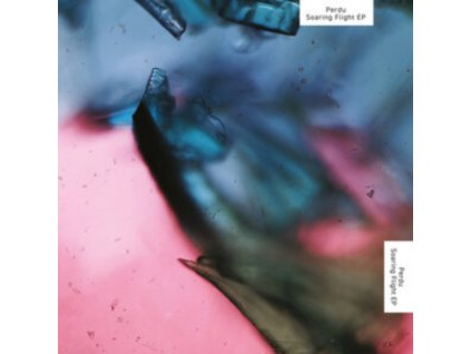 """PERDU - Soaring Flight (12"""" Vinyl)"""