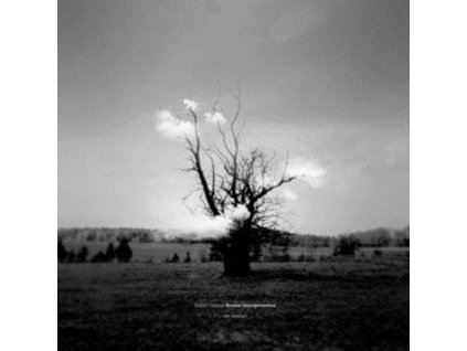 KAZUYA NAGAYA - Dream Interpretation (The Remixes) (LP)