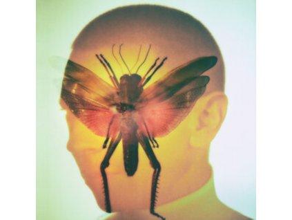MAELSTROM - Rhizome (LP)