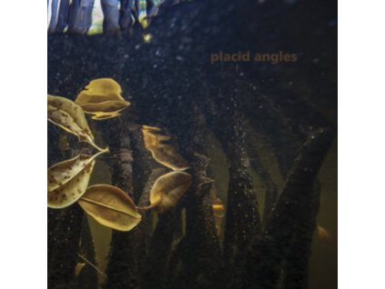PLACID ANGLES - Touch The Earth (LP)