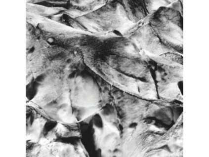ASMUS TIETCHENS & MIKI YUI - Neues Boot (LP)