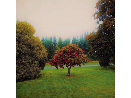 BATS - Foothills (LP)