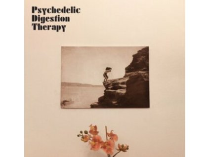 PSYCHEDELIC DIGESTION THERAPY - Psychedelic Digestion Therapy (LP)