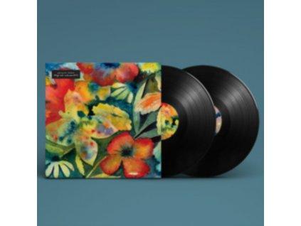 ADRIANNE LENKER - Songs And Instrumentals (LP)