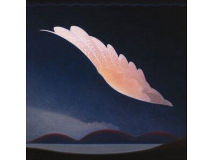 DEAN MCPHEE - Witchs Ladder (LP)