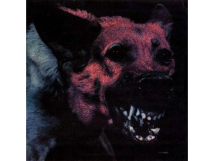 PROTOMARTYR - Under Color Of Official Right (LP)