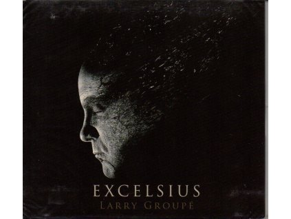 cd larry groupe excelsius