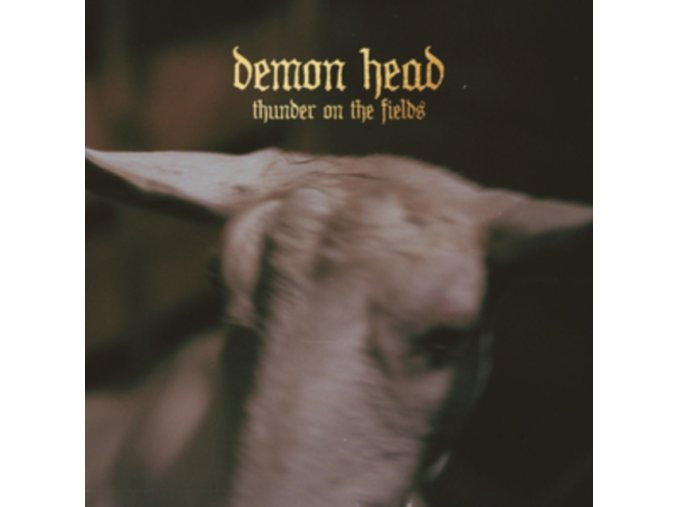 DEMON HEAD - Thunder On The Fields (LP)