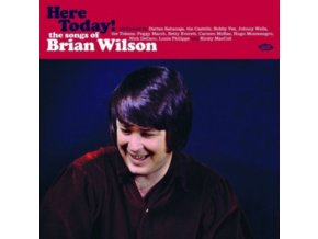 VARIOUS ARTISTS - Here Today! The Songs Of Brian Wilson (LP)